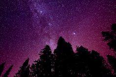 Starry Dreams
