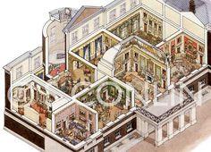 Image result for cutaway views Georgian and Regency houses