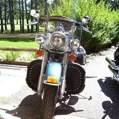 Desert Dawgs - for Harley Softail & Fat Boy 2000-present Standard Bar