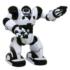 Mini robot cu extremitati pozabile (cap, brate, picioare), se poate deplasa, la unele se aprind si ochii ; arata exact ca robotul mare caruia ii corespunde, dar de dimensiuni mai mici.
