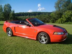 1999 Ford Mustang -   1999 Ford Mustang  Autotrader  1999 ford mustang  sale  carsforsale. Search 1999 ford mustang for sale on carsforsale.com. with millions of cars for sale youll find the best local deal.. 1999 mustang parts  cj pony parts Cj pony parts carries an extensive supply of 1999 ford mustang parts. check out our website to find the 1999 mustang parts and enjoy free shipping on all purchases!. 1999 ford mustang svt cobra  sale  carsforsale. Search 1999 ford mustang svt cobra for…