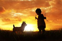 Auryn & dog by 3 Joko Scenery Pictures, Cool Pictures, Amazing Photos, Auryn, Pet Dogs, Pets, Dog Silhouette, Joko, Sunset Photos