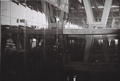 ilford Brooklyn Bridge, Black And White, Film, Travel, Movie, Blanco Y Negro, Movies, Viajes, Film Stock