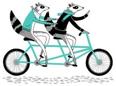 foxes on a bike for 2
