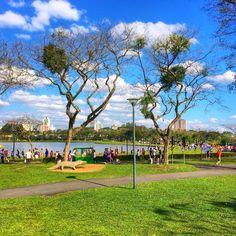 Parque Barigui. Curitiba, Brasil.
