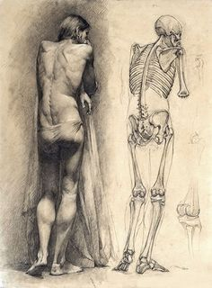 Anatomy and Figurative Drawing - Drawing Academy