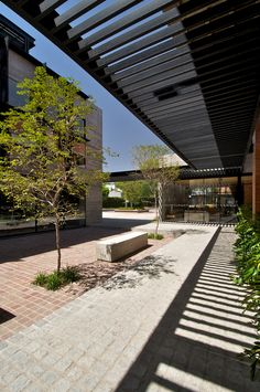 Galería de Centro de Recursos para el Aprendizaje y la Investigación (CRAI) / 3Arquitectura - 5