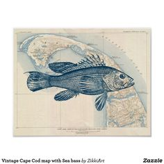 Vintage Cape Cod map with Sea bass #hq  #old #book #illustration #gravure #decor #digital #collage  #quality  #inspiration #retro #antique #vintage  #draw #drawing  #black #white #poster #wallart #map #paper #walldecor #walldesign #placard #banner #billboard