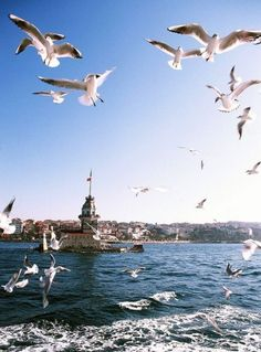 Imagen de istanbul - Travel tips - Travel tour - travel ideas Istanbul Travel, Istanbul City, Hagia Sophia, Places To Travel, Places To See, Roadtrip Europa, Places Around The World, Around The Worlds, Wonderful Places