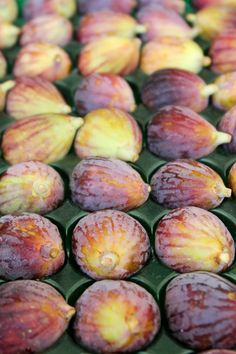 Ten 5-Minute Fig Recipes. My fig tree is giving me more than i know what to do with!