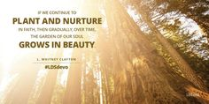 """""""If we continue to plant and nurture in faith, then gradually, over time, the garden of our soul grows in beauty."""" From Elder L. Whitney Clayton's Sept. 2015 Worldwide Devotional message http://lds.org/broadcasts/watch/ww-devotionals/2015/09 #LDSdevo #Faith #ShareGoodness #PassItOn"""