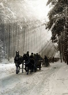 Kulig in the Kampinos Forest, Poland, 1972 [source].Kulig (sleigh ride) is an old Polish winter tradition popularized by the szlachta (nobility) during Renaissance.