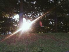 Summer sound 여름소리
