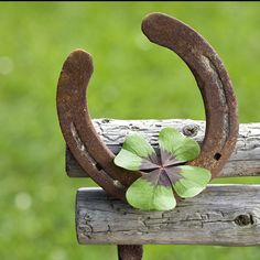 Luck~a horse shoe is very lucky with a four leaf clover Ad Of The World, Irish Eyes Are Smiling, Irish Cottage, Lucky Horseshoe, Horseshoe Crafts, Horseshoe Art, Four Leaves, Luck Of The Irish, Four Leaf Clover