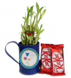 Ferns N Petals Lucky Gift For Mom | Rs 299, 50 % Off |