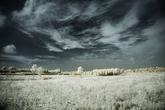 Nice sky, boring field by 1banaan, via Flickr