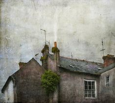 In your face, paint brush!!!! Above Seamus O'Riley's Fish Shop by Jamie Heiden