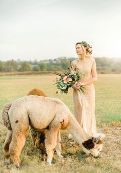 OMG! We're crushing on this whimsical styled wedding featuring an adorable alpaca!