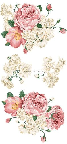 Beautiful hand drawn style peony flower PSD layered material...