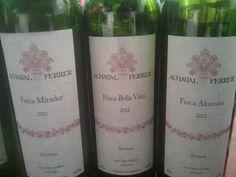 @montiph Twitter: #TheBigThree Duncan, Ginobili y Parker lo máximo del vino argentino @AchavalFerrer en #AutreMonde