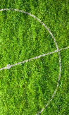⇜❊↠  grass
