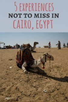 Egypt was my first international vacation after moving to the U.S. at the ripe old age of 4. It was 2004, and I was overjoyed to be spending the summer in the land of pyramids, pharaohs, and feluccas…MoreMore  Egypt  Adgang til vores blog finder meget mere information   https://storelatina.com/egypt/travelling #Mesir #beach #Exipto #Aikupito