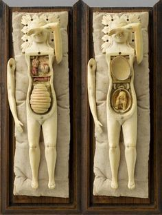 """So pretty!! need one! pollygannon: sealmaiden: Anatomical mannequin called """"Motherhood"""" Ivory, 17th century"""