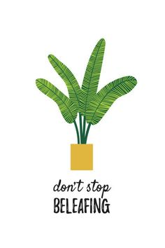 Botanical poster with quote. Don't stop beleafing – Planting Types Of Succulents Plants, Buy Plants, Planting Succulents, Indoor Plants, Succulent Plants, Plant Art, Plant Decor, Plant Illustration, Botanical Illustration