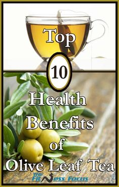 Olive leaf tea might be one of the best beverages on earth. Oleuropein, the chief ingredient in olive leaf has been linked to numerous health benefits. Matcha Benefits, Lemon Benefits, Coconut Health Benefits, Olive Leaf Benefits, Tea Benefits, Olive Leaf Tea, Olive Tree, Tomato Nutrition, Stomach Ulcers