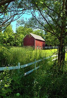 Summer Farmstead Photograph  - Summer Farmstead Fine Art Print