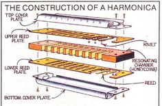 This beginner's guide to learning how to play harmonica will teach you about the instrument, how to hold your harmonica, playing tips, tunes to start out with, and more.