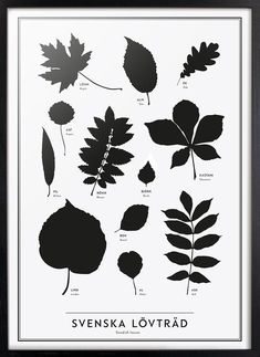 The SE Collection conveys knowledge about Sweden and the Swedish language to the world. Theartworks are characterised by a timeless, stylish and clean Swedis. Educational Activities For Kids, Toddler Activities, Party Mottos, Swedish Language, Creative Kids, Leaf Prints, Art Education, Bulletin Board, Art Projects