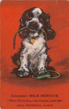 Vintage Swap/Playing Cards - 1 SINGLE-  BUTCH DOG ADVERT- CAMPANA'S MILK SERVICE