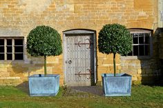 Frame a Door with Standard Bay Trees- in Country Garden Design Ideas - how to a create a well-planned herbaceous border and farmhouse or cottage look, ideas for gardens both big and small. Large Garden Planters, Tree Planters, Garden Urns, Potted Trees, Outdoor Planters, Trees To Plant, Planter Pots, Copper Planters, Large Garden Ornaments