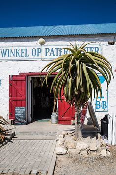 Where to eat in the fishing village of Paternoster along the West Coast in South Africa on DrizzleandDip Africa Destinations, Holiday Destinations, Fishing Villages, Cape Town, West Coast, Places To See, South Africa, Dip, Restaurants