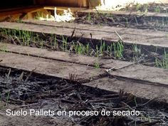 Mueblesdepalets.net: Casa hecha con palets en Chile Chile, Wood, Pallets, Cob Houses, Rustic Homes, Wine Cellars, Homes, Cob Home, Woodwind Instrument