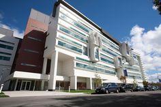 Center for Genetics & Pharmacology, Roswell Park Cancer Institute, Buffalo, NY