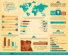 Cotton Threads Infographic