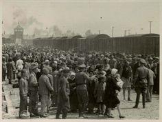 A los 18 años de edad Lilly Jacob fue deportada con su familia – junto a la mayoría de los judíos de Hungría - en la primavera de 1944. ...