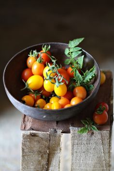 cherry tomatoes- a cold snowy day and I am looking at seed catalogs and dreaming of tomatoes, homegrown and still warm from the sun.