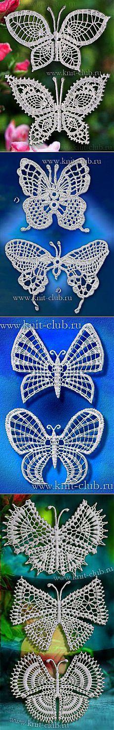 As borboletas delicadas.