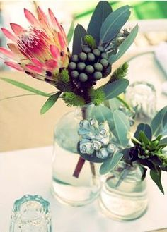 fell in love with protea flowers while in south africa. fell in love with protea flowers while in so Protea Wedding, Floral Wedding, Wedding Flowers, Wedding Bouquets, All Flowers, Green Flowers, Beautiful Flowers, Desert Flowers, Protea Flower