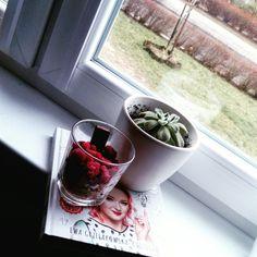 #kaktusik #rlm #pyszności #like4like