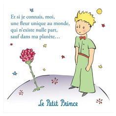 Most memorable quotes from The Little Prince , a Film based on Novel. Find important The Little Prince Quotes from book. The Little Prince Quotes about a prince's childhood. Little Prince Quotes Rose, Petit Prince Quotes, Little Prince Tattoo, The Little Prince, Citations Rose, Book Quotes, Words Quotes, Citations Facebook, Prince Tattoos