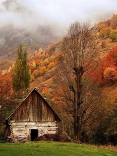 Oh the stories this old barn could tell................