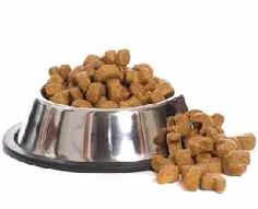 All about Canine Nutrition