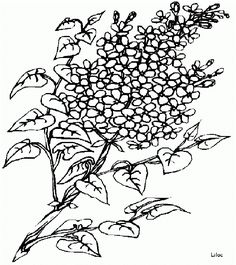 Flower Coloring Sheets, Printable Flower Coloring Pages, Food Coloring Pages, Abstract Coloring Pages, Online Coloring Pages, Cartoon Coloring Pages, Disney Coloring Pages, Animal Coloring Pages, Coloring Pages For Kids