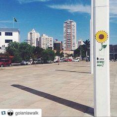 Oi vem sempre aqui? Bom dia Goiânia  Bom dia Brasil  @goianiawalk . . #praça #squre #girassol #goiania #gyn #parque #goias #go #brasil #br #cities #wonderfulplace #world #travel #love #fotografia #amor #metropole #fotografosbrasileiros #viaje #conheca #arrisque #viva #arquitetura #architecture #amomeupaís #great_captures_brasil #metropolizese . . #Repost @goianiawalk with @repostapp  Foto de @ara.batur. Via #goianiawalk. by metropolize_se http://ift.tt/1XGk4Wi