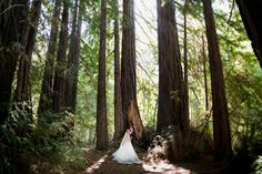 Bride and groom share a special moment under a gorgeous backdrop of redwoods in Santa Lucia Preserve, Carmel Valley. Photo by Larissa Cleveland. Napa California, California Wedding, Wedding Couples, Wedding Photos, Santa Lucia Preserve, Redwood Wedding, Portrait Photography, Wedding Photography, Top Wedding Photographers
