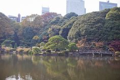 Tokyo (39)